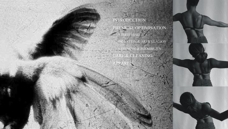 26_wings
